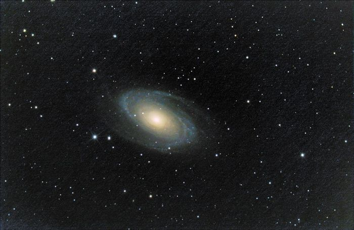 ultime m81